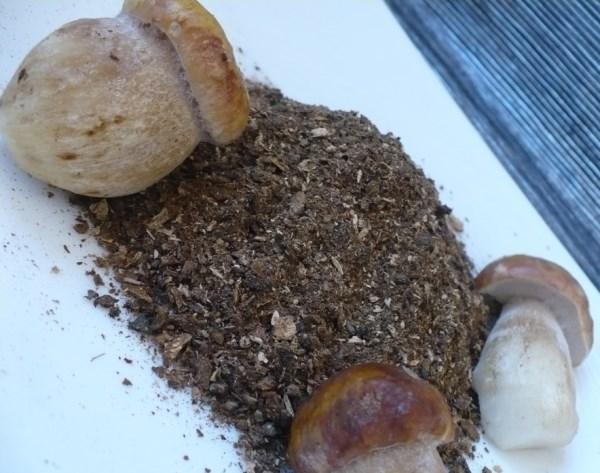 Приготовление грибного порошка