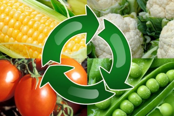 Севооборот сельскохозяйственных культур