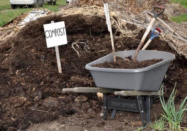 компост для вишни