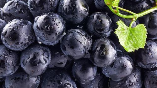Виноград и высокая влажность
