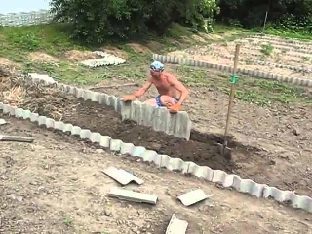 Как оградить участок от малины